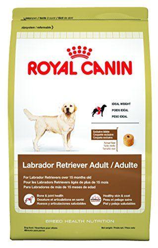 Royal Canin Labrador Retriever Dry Dog Food 30 Pound Bag Dry Dog Food Dog Food Recipes Labrador Retriever
