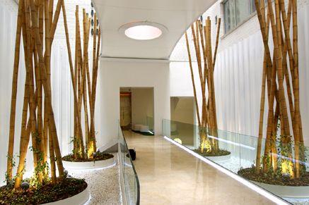 Especial decoraci n y paisajismo en oficinas y edificios - Decoracion bambu interiores ...