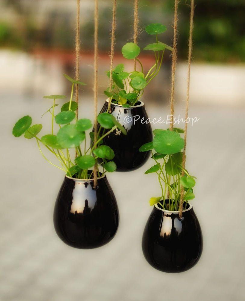 Black egg shape ceramic hanging planter container