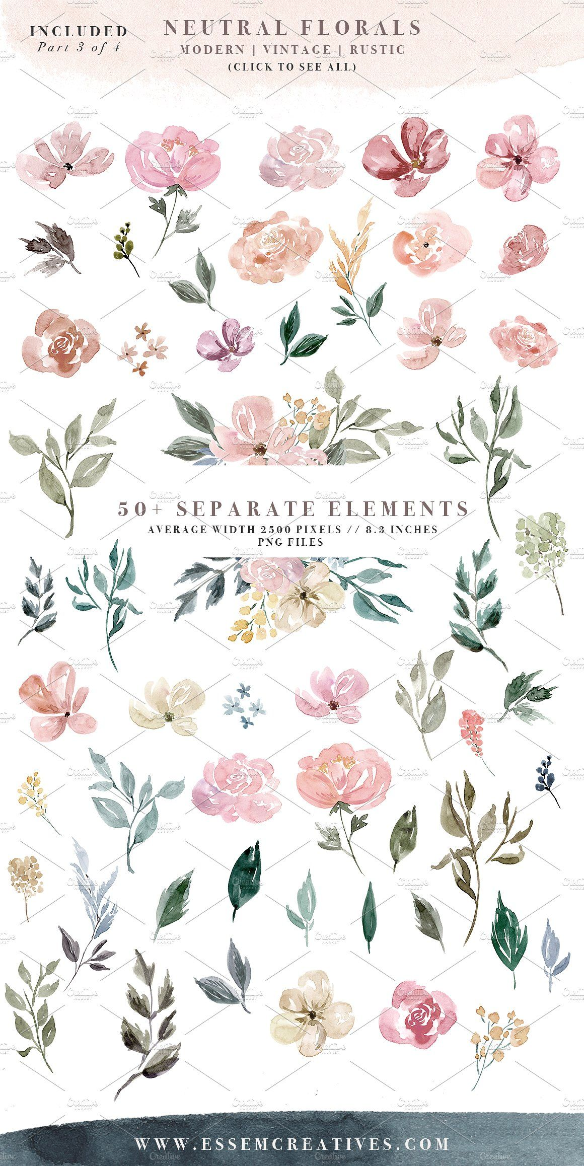 Neutral Watercolor Flower Graphics By Essem Creatives On Creativemarket