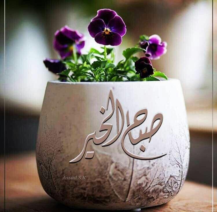 نس مات الصباح تبدأ بـ أذكار تسكن تفاصيل صباحك فـ من هنا تبدأ حكاية يوم جديد وروح يسكنها الأمل والتفاؤل Good Morning Arabic Romantic Love Quotes Morning Wish