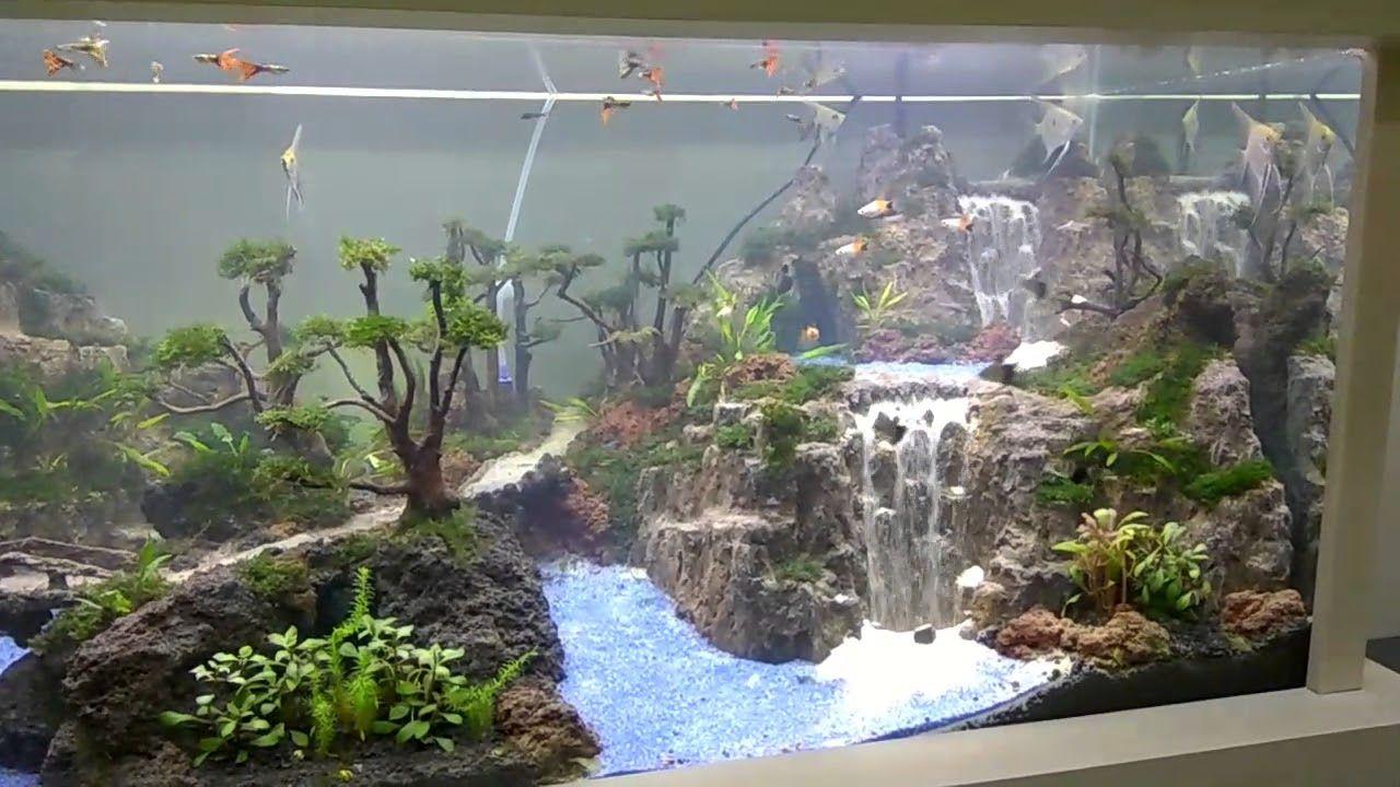 Khenzo Aquascape Triple Waterfall Youtube Aquascape Aquarium Landscape Aquascape Aquarium