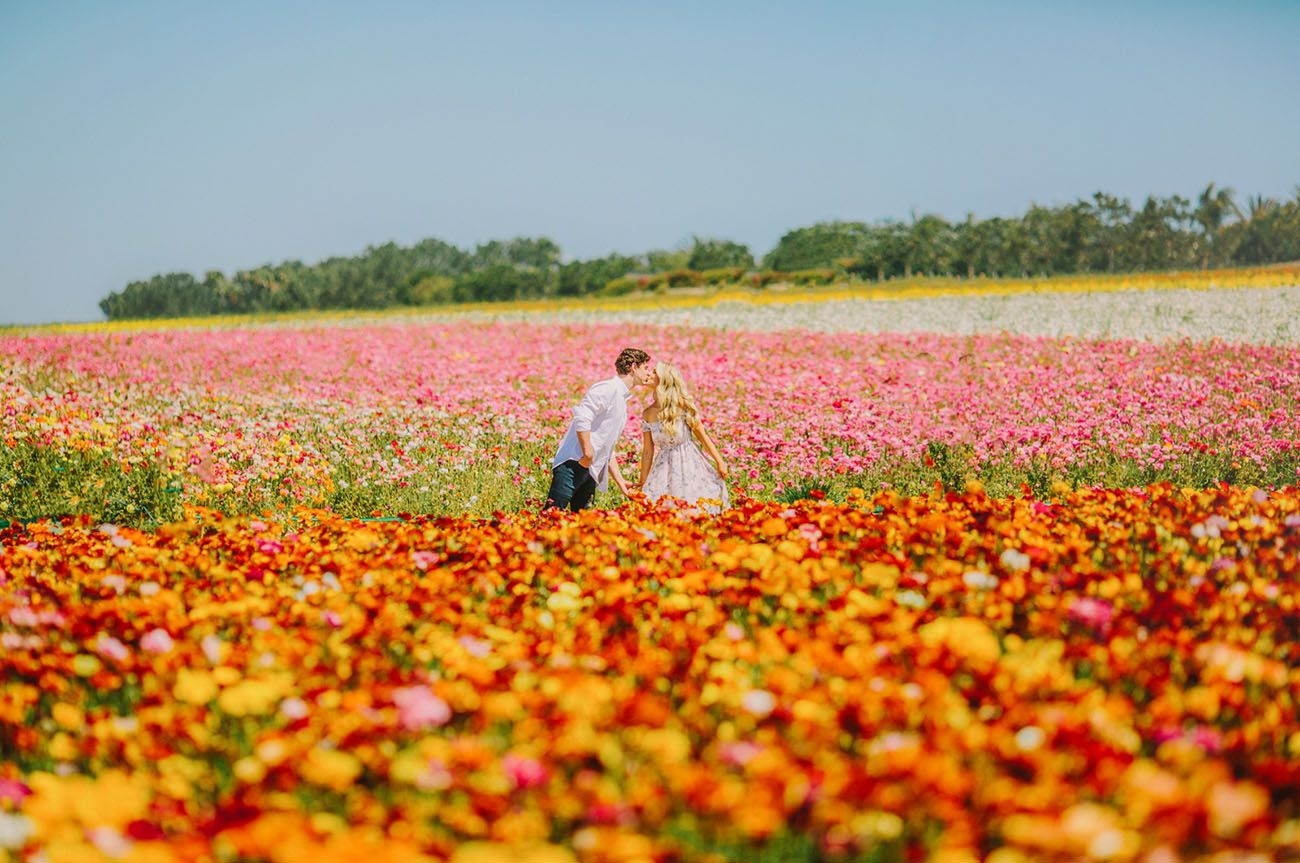 This Couple Captured Their Engagement Photos In A Flower Field Of Ranunculus Green Wedding Shoes Field Engagement Photos Flower Field Engagement Photos
