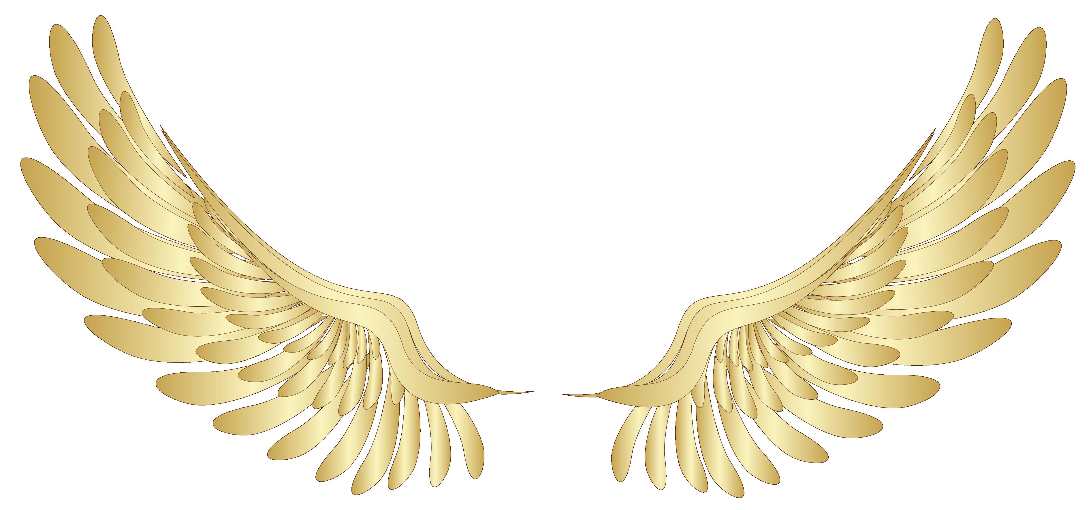 Pin by mohammedosamazain on Wings | Asas de anjo, Asas ...