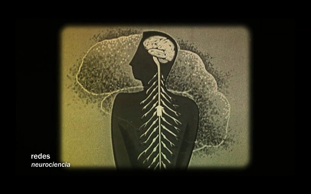 Redes 163: Estimula tu cerebro para vivir más y mejor - neurociencia