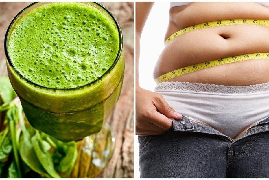 Zsírégetők termogenico. Fogyás és Zsírégetés - 9722perenye.hu, Fogyás lipodrénnel