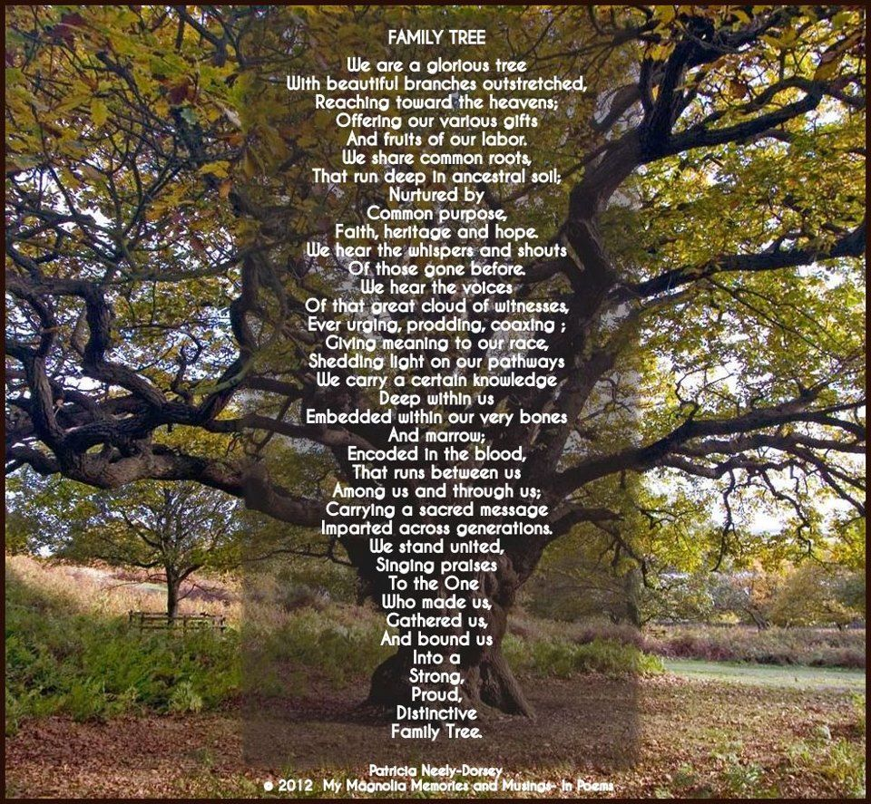 The Family Tree Poem by Patricia Neely-Dorsey - My ...