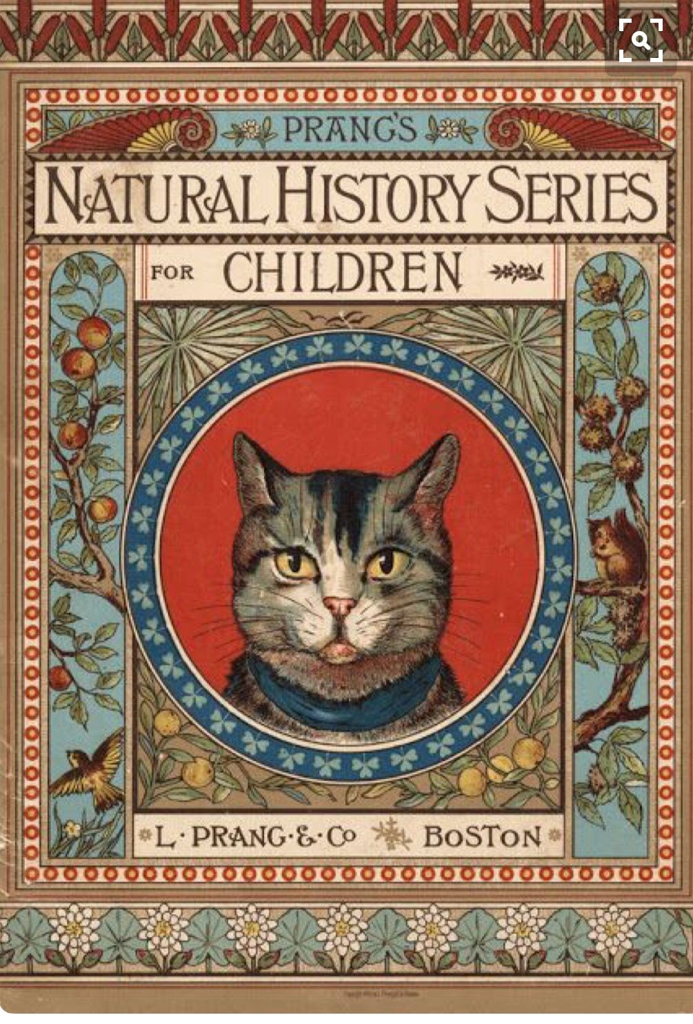 Antique book with Kitty