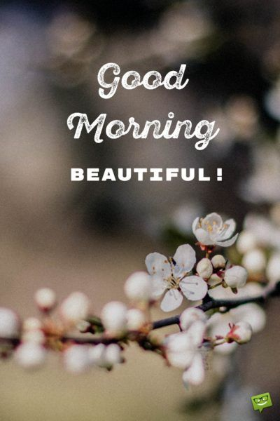 Rise Shine 111 Good Morning Messages For Your Love Good Morning Beautiful Good Morning Beautiful Quotes Good Morning Quotes