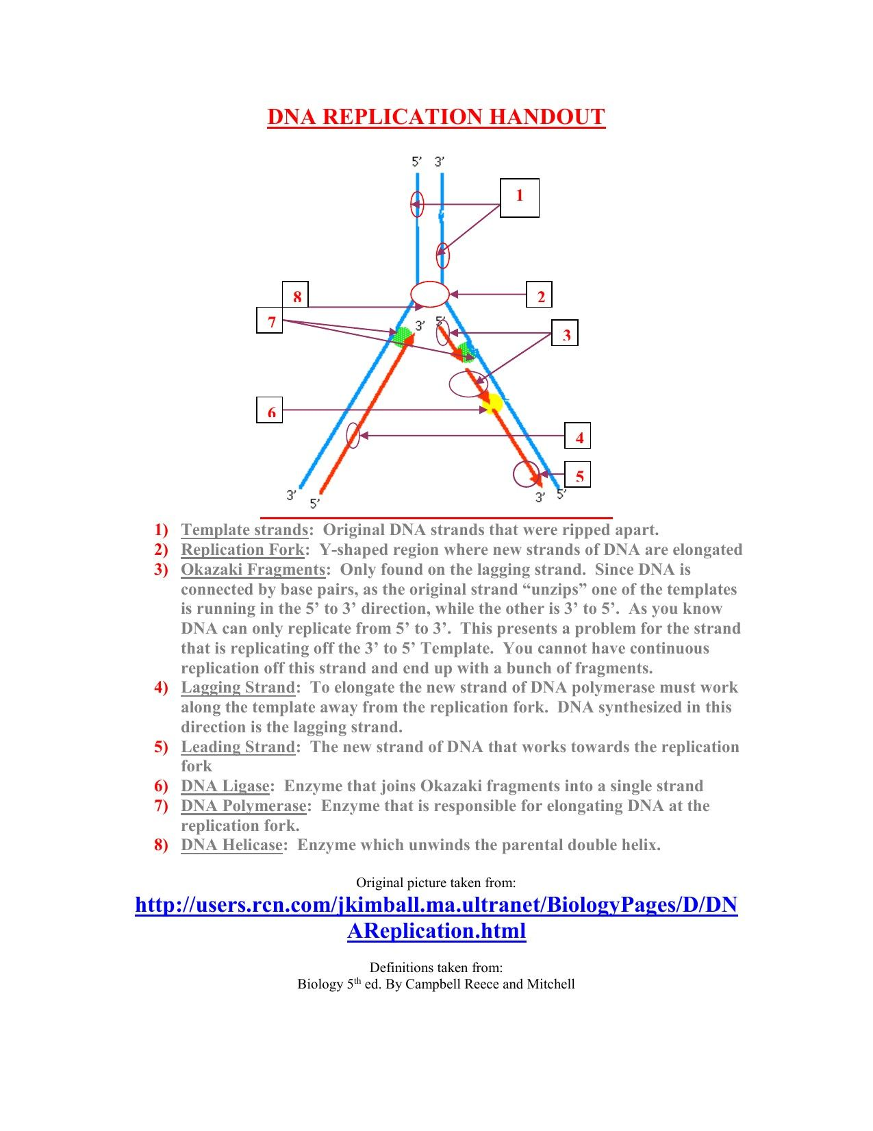 9 Legal Dna Molecule And Replication Worksheet Di