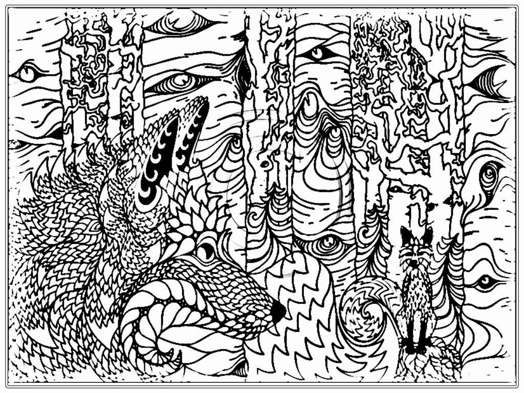 Wolf Coloring Pages For Adults Adult Wolf Coloring Pages  Average Lifespan Of The Wolf Is Up To