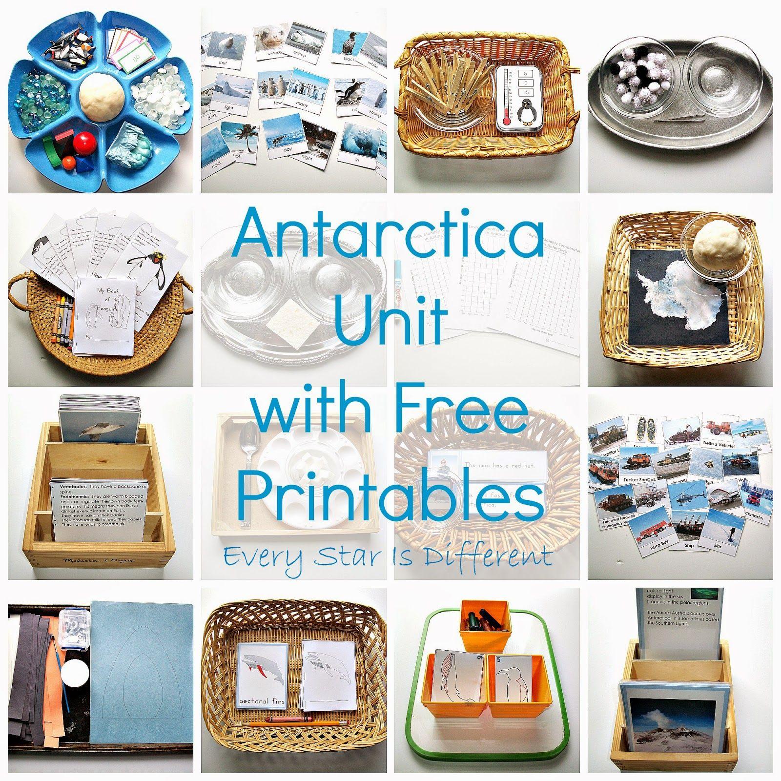 Antarctica Unit W Free Printables Antarctica Montessori Activities Montessori [ 1600 x 1600 Pixel ]