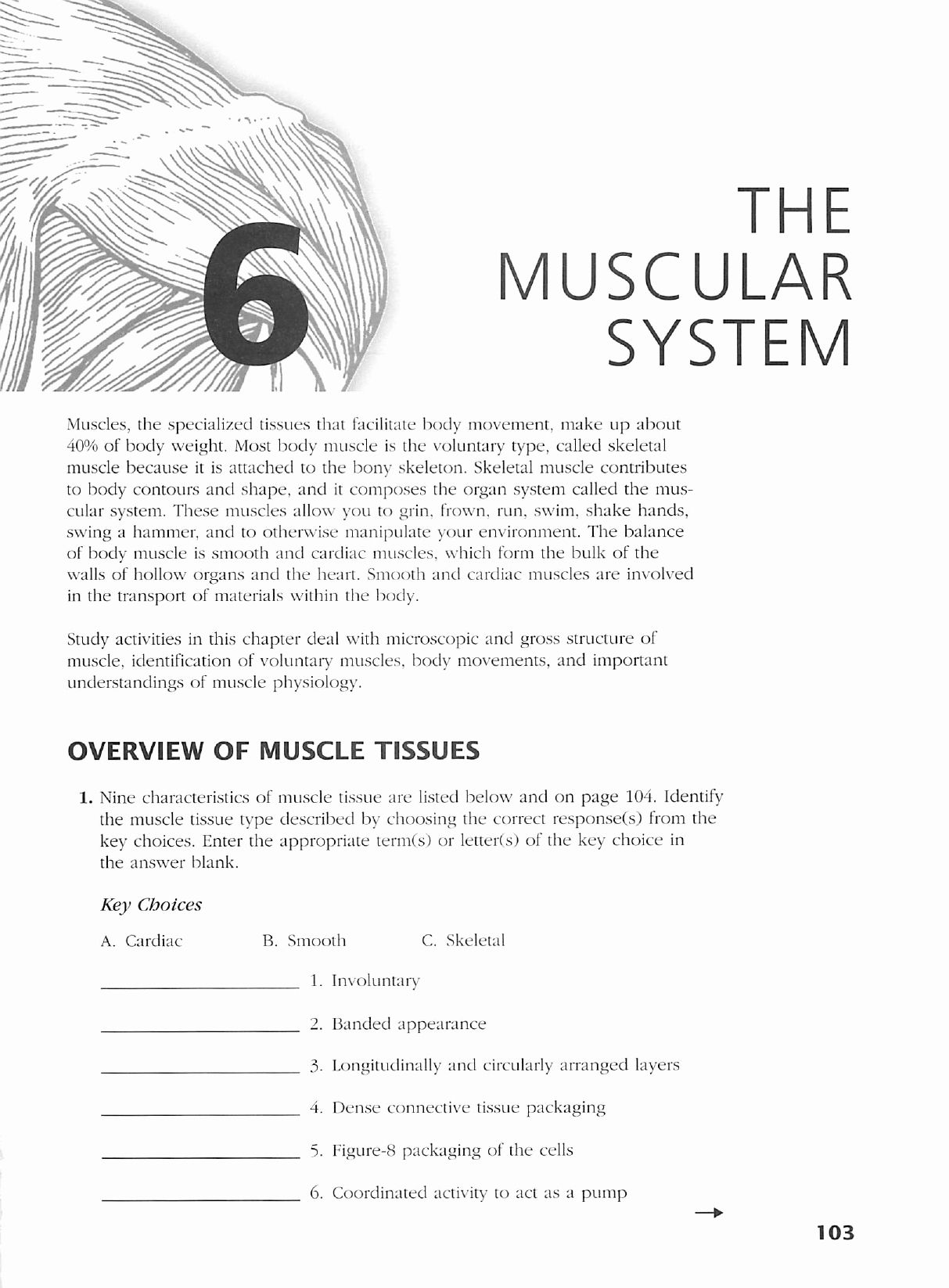 Anatomy And Physiology Coloring Workbook Answers Chapter 7