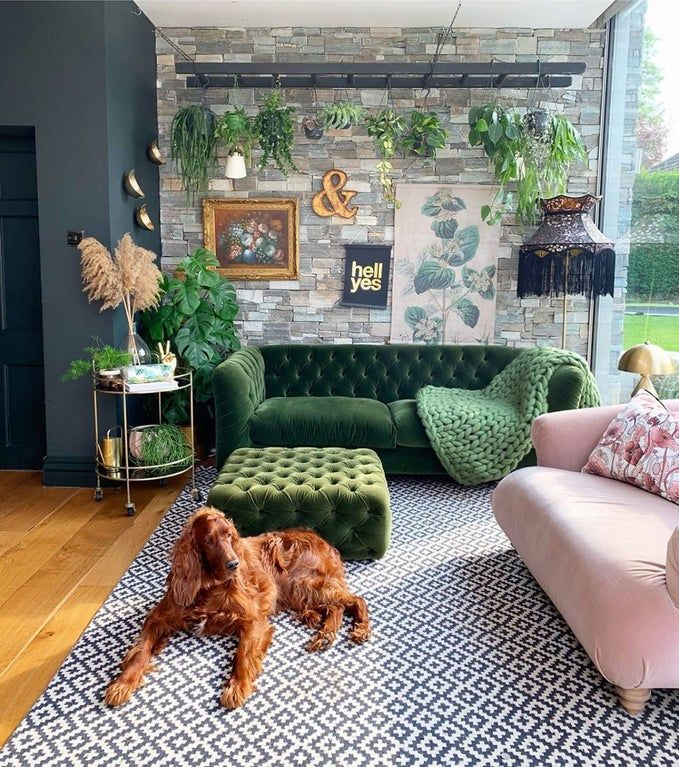 Divine living room and a dog who makes it even cozier (Leeds)