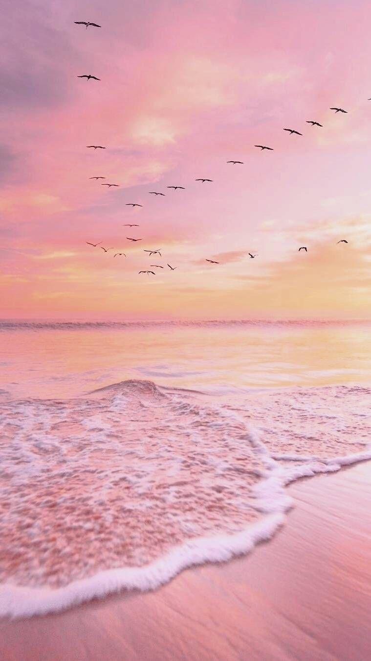 pink sunset ocean