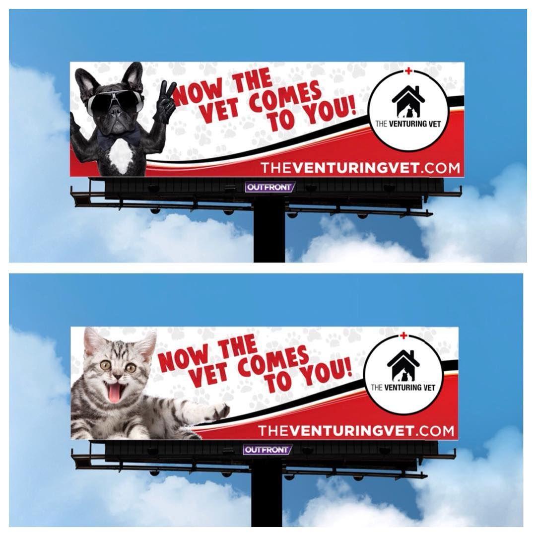 Animal Jobs Near Me 2020 Dog Doctor Vets Animals
