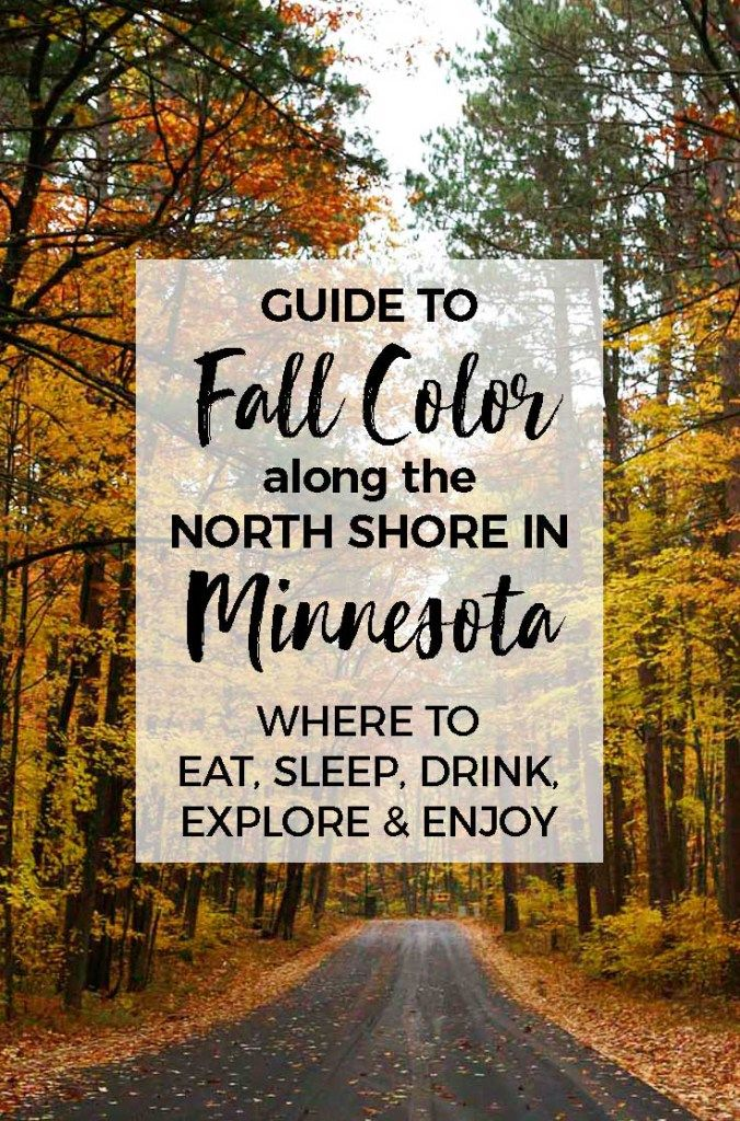 Minnesota fall color :: Take a trip up to Minnesota's North Shore to see the colorful show. And why not stop for a craft beer or tasty pizza while you are at it? We'll tell you our favorite cafes, coolest places to sleep and best waterfalls too. #minnesota #northshore #fallcolor #roadtrip