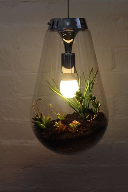 never saw anything like this very clever hanging terrarium light dreamin 39 pinterest. Black Bedroom Furniture Sets. Home Design Ideas