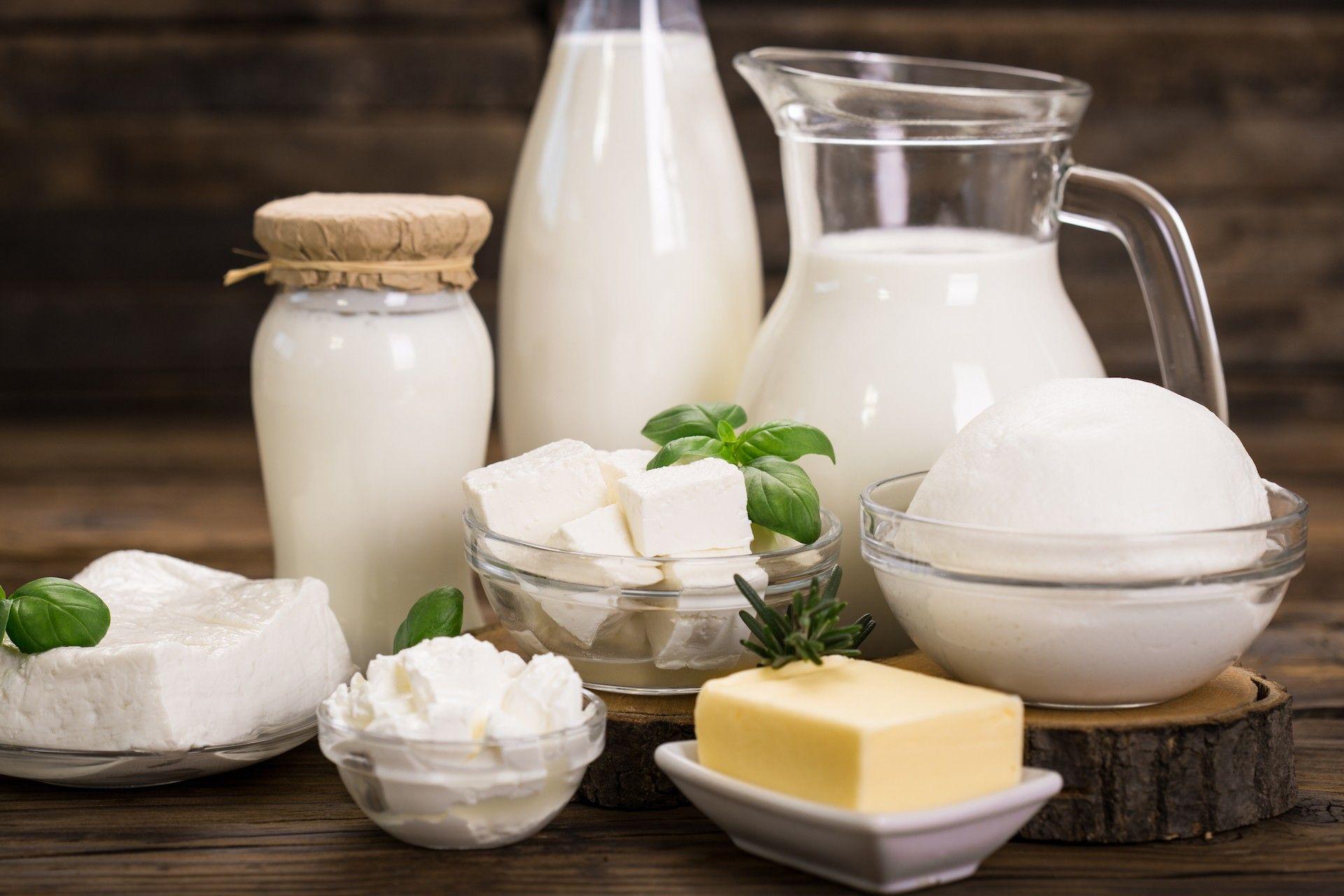Les produits laitiers, alliés du quotidien   Produits laitiers ...