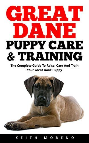 Great Dane Puppy Care Training The Complete Guide To Raise