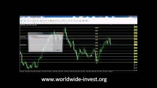 Learning basic options trading