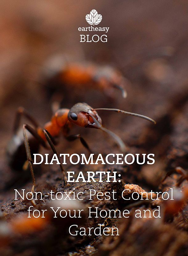 Diatomaceous Earth: Non Toxic Pest Control For Your Home And Garden