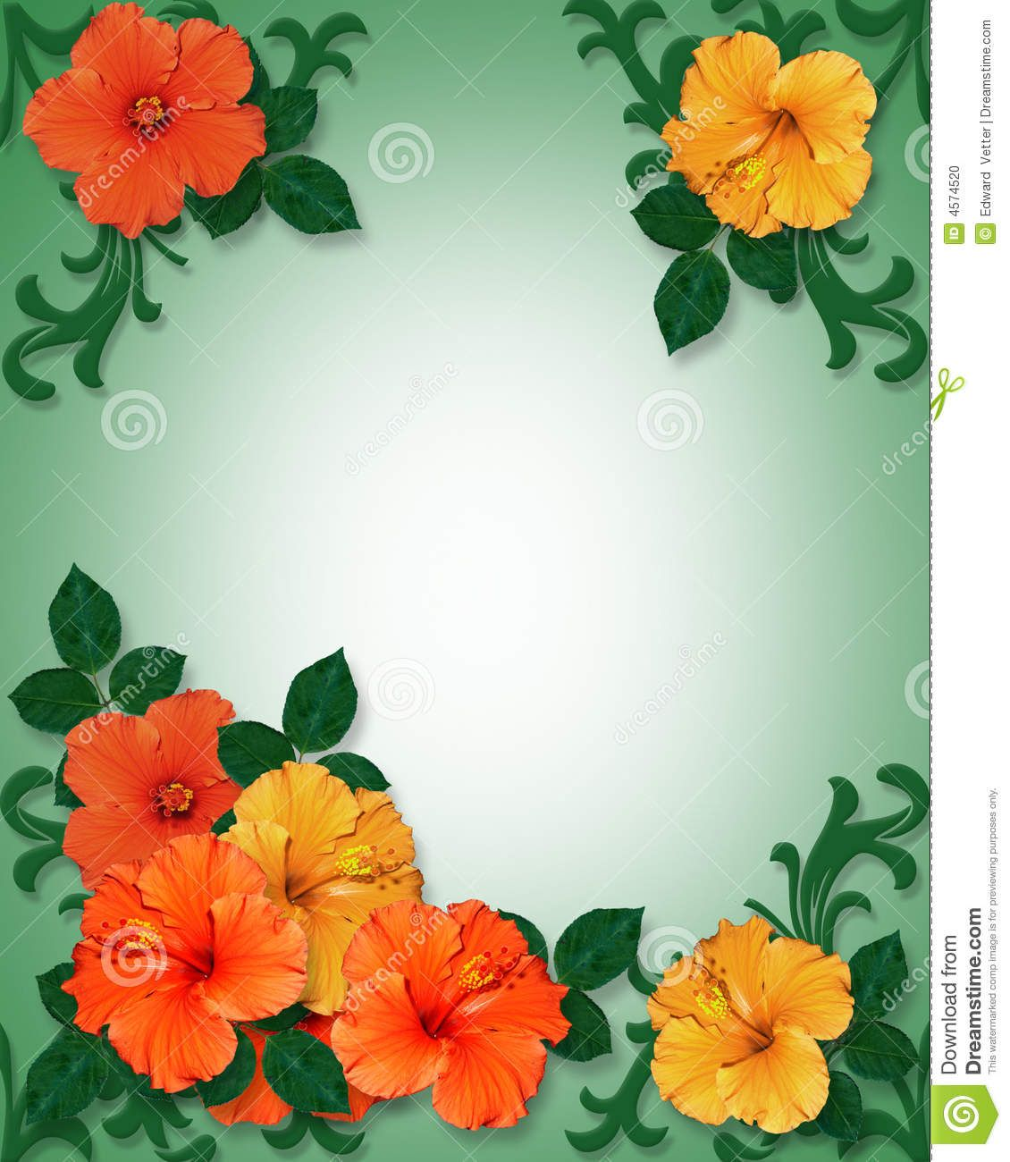 Hawaiian Clip Art Borders Tropical Border Clip Art Tropical