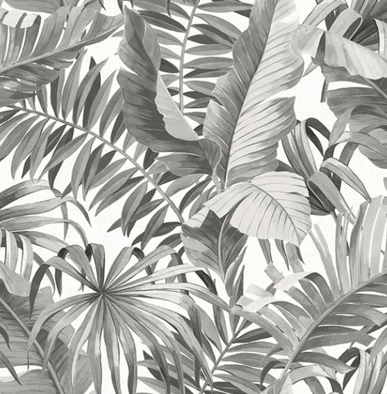Black Grey Palm Banana Leaf Wallpaper in 2020 Palm leaf