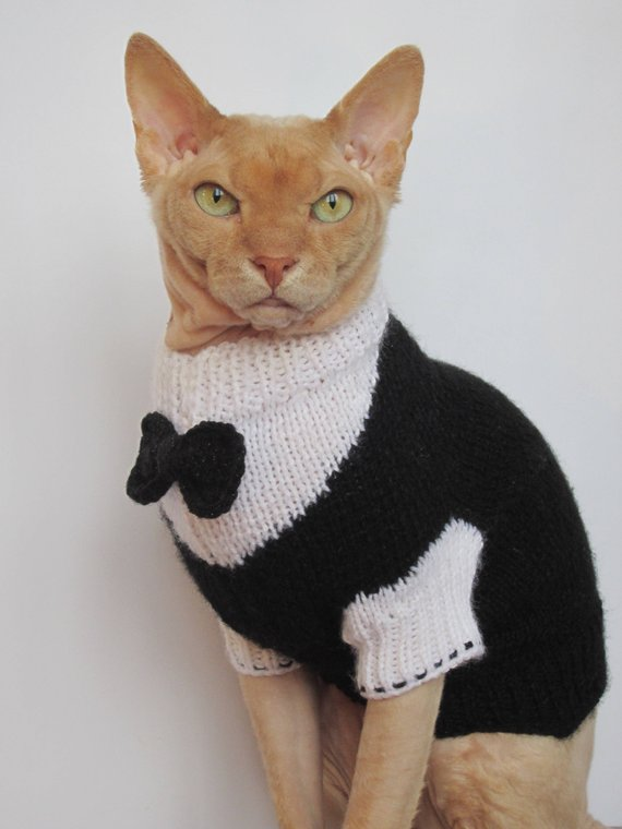 Tuxedo cat, cat sweater, cat dinner jacket, cat wedding