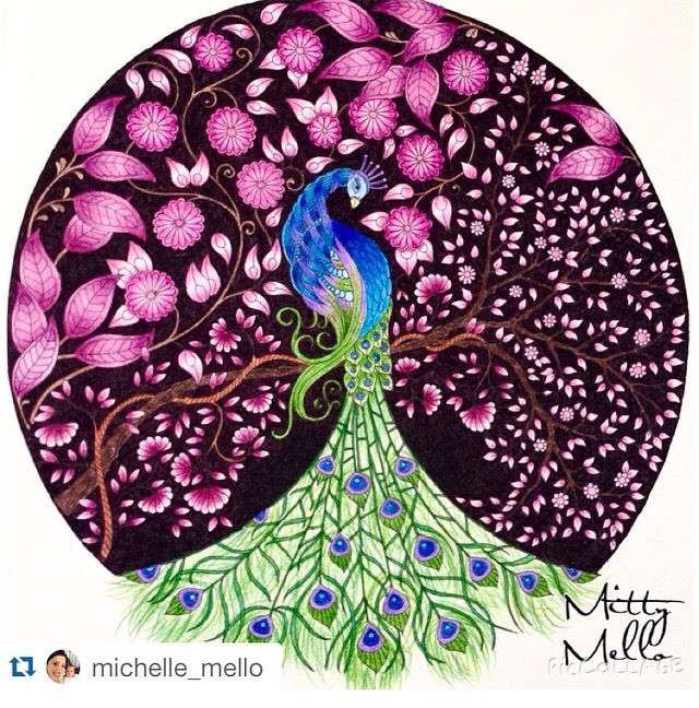 Johanna Basford Secret Garden Peacock Art Adult Coloring Books Gardens Color Pencil Coloured Pencils Project Ideas