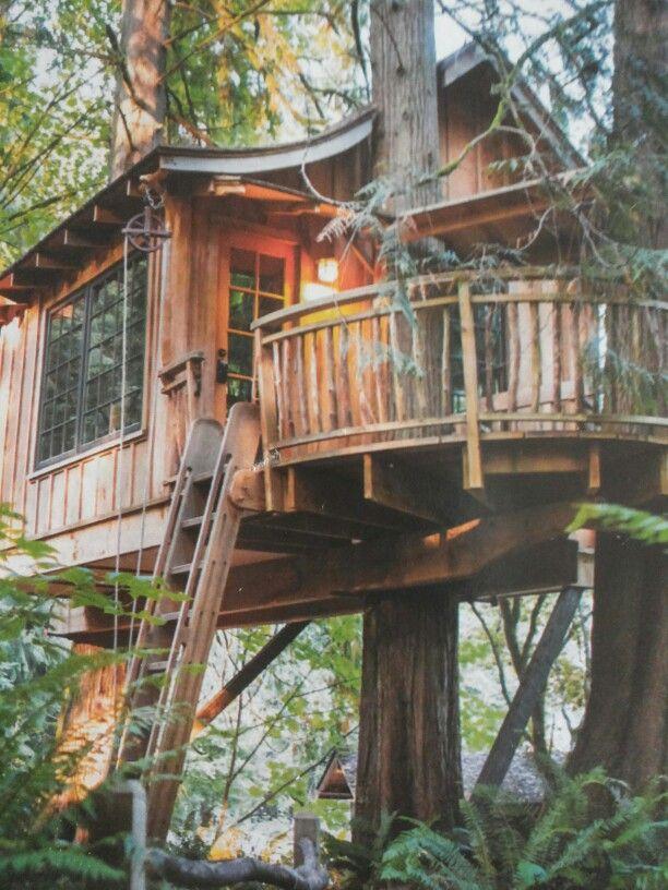 Casa sull 39 albero e 39 l 39 insolita vacanza a tutta natura da vivere a claut immerso nel parco - Casa sugli alberi ...