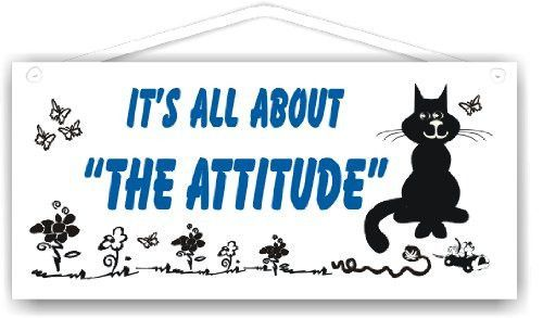 It's all about the attitude-cat