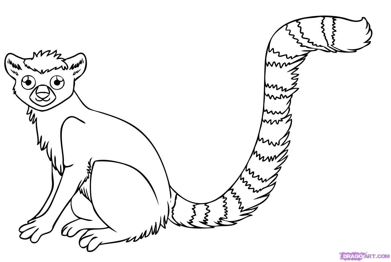 black and white forest animals coloring pages | Step 7. How to Draw a Lemur | Kinfolk | Rainforest animals ...