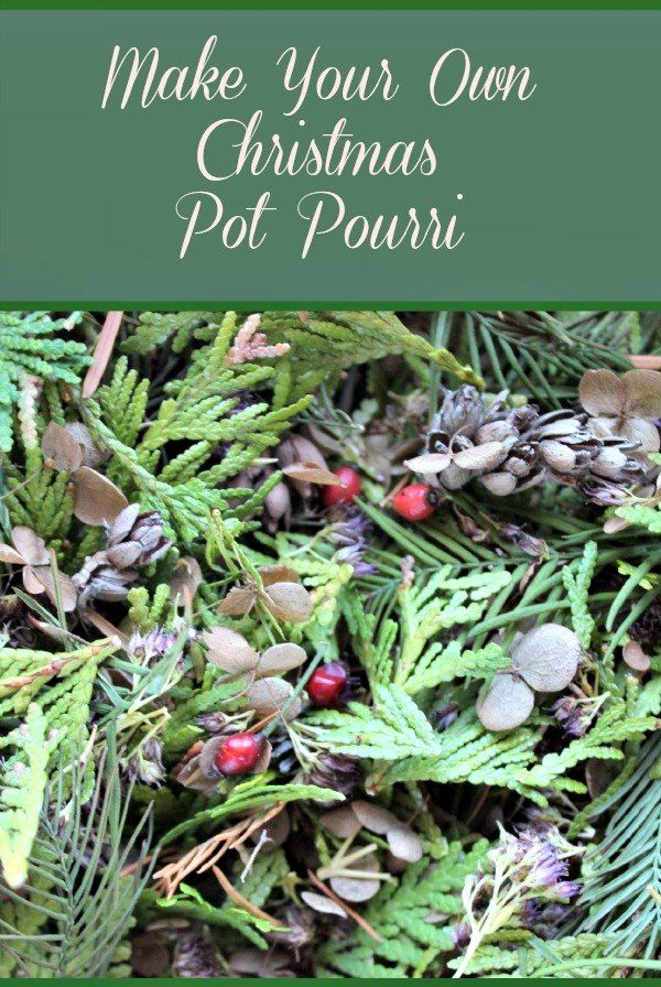 Make+Your+Own+Christmas+PotPourri+From+Your+Garden