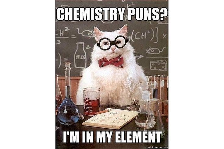 The Best of the Chemistry Cat Meme Chemistry cat, Chemistry puns - best of periodic table puns