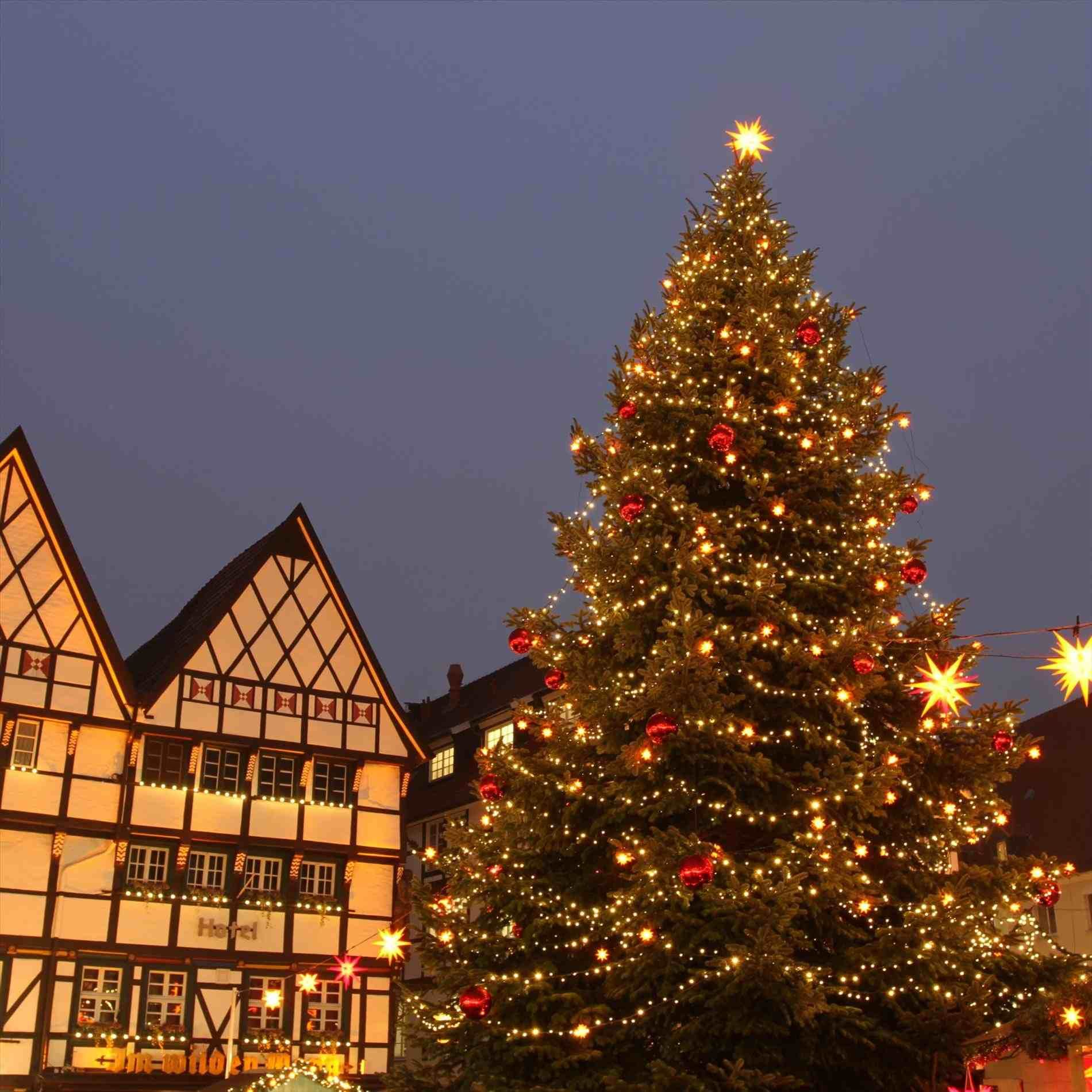 New Post stunning christmas trees decorated outside