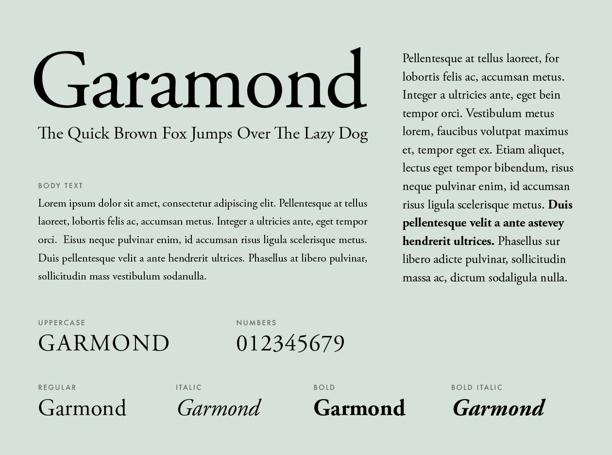 What Fonts Should You Use For Your Resume