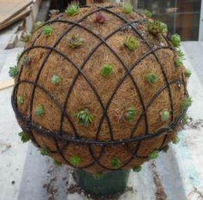 Idea para transformar, pelota de tierra - maceta.