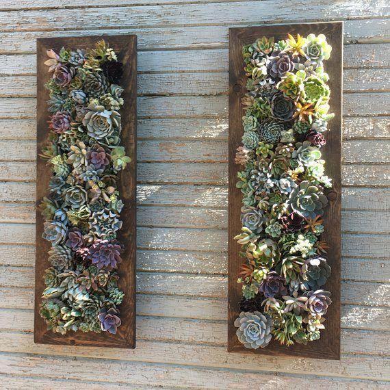 pin by alma on succulent gifts vertical garden diy on indoor herb garden diy wall vertical planter id=94114