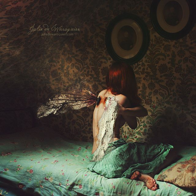 Those wings used to fly by Julie de Waroquier