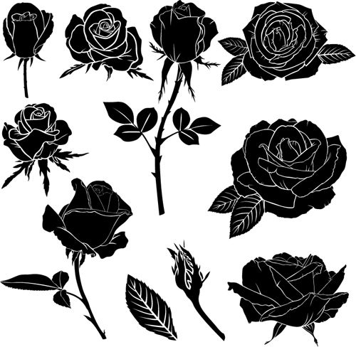 black rose vector illustration diy ideas pinterest. Black Bedroom Furniture Sets. Home Design Ideas