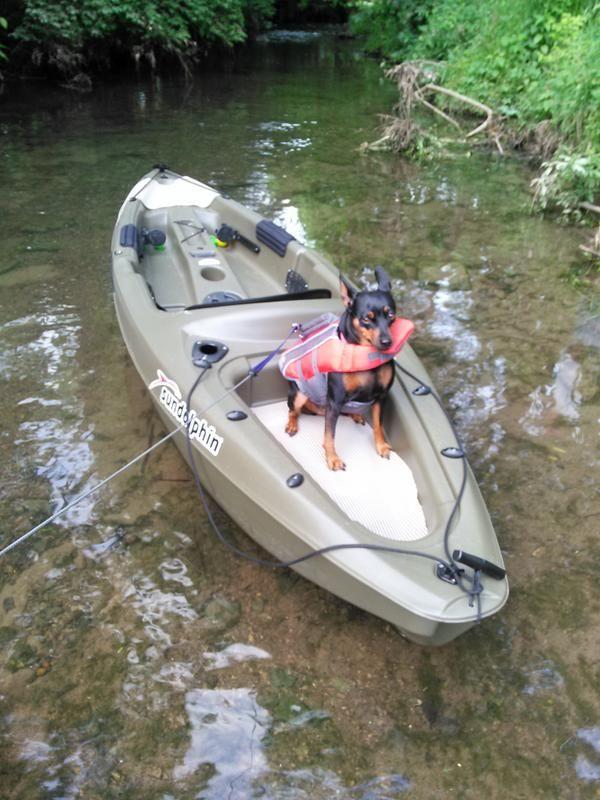 The Basics Of Fishing At Night Kayaking With Dogs Kayak Fishing