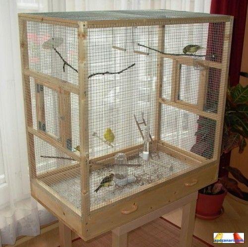pingl par francois gallichan sur cage pinterest canaris les ailes et paradis. Black Bedroom Furniture Sets. Home Design Ideas