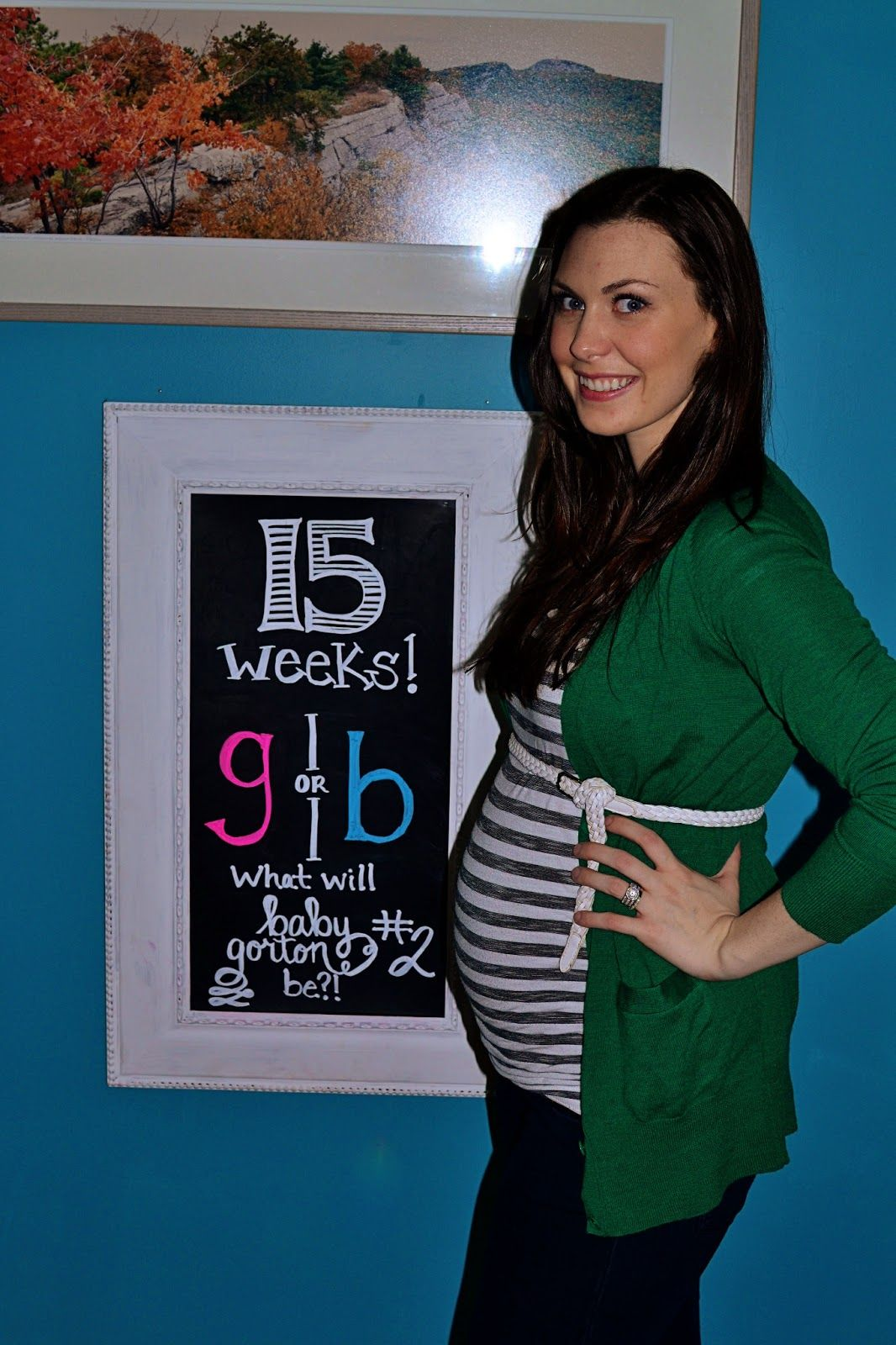 15 weeks Pregnant!...plus a couple days! Happy to say I lost 5 lbs in  January as part of my NYE resolution, and I've only just now gained 4 of  them back! :D