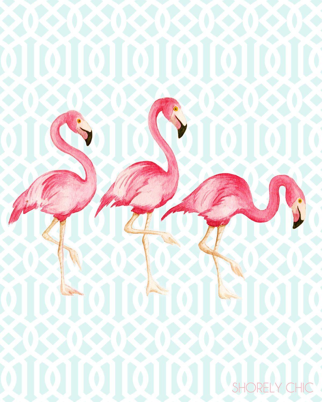 Art For Guest Room Flamingo Trellis Print
