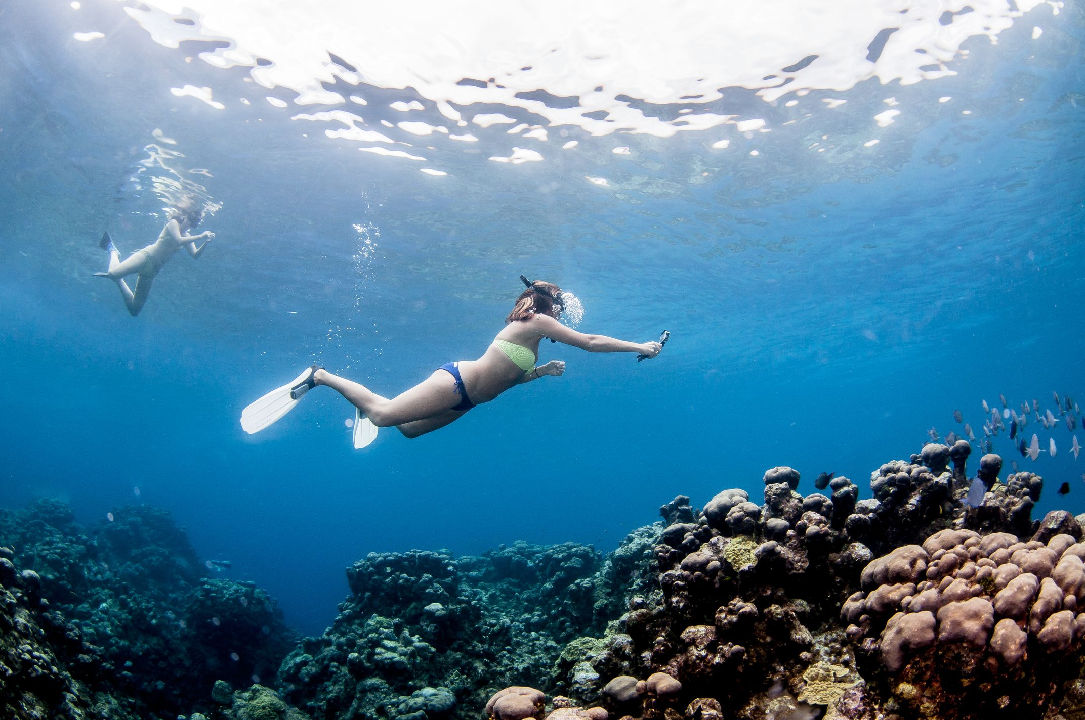 New Seven Mile Beach Snorkeling Tour Available In Grandcayman