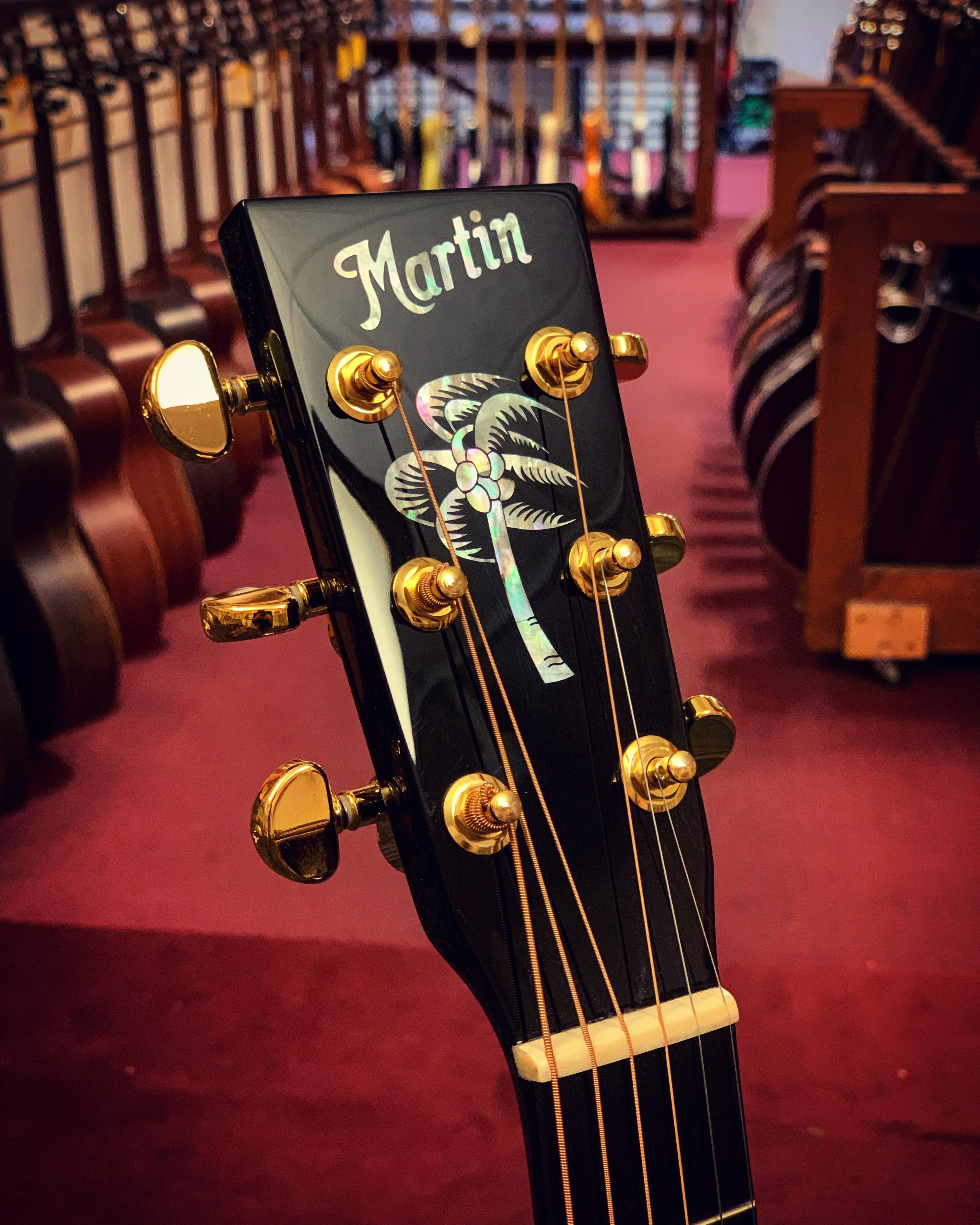 Martin Jimmy Buffett Custom Guitar Case Custom Guitar Custom Guitar Case Jimmy Buffett