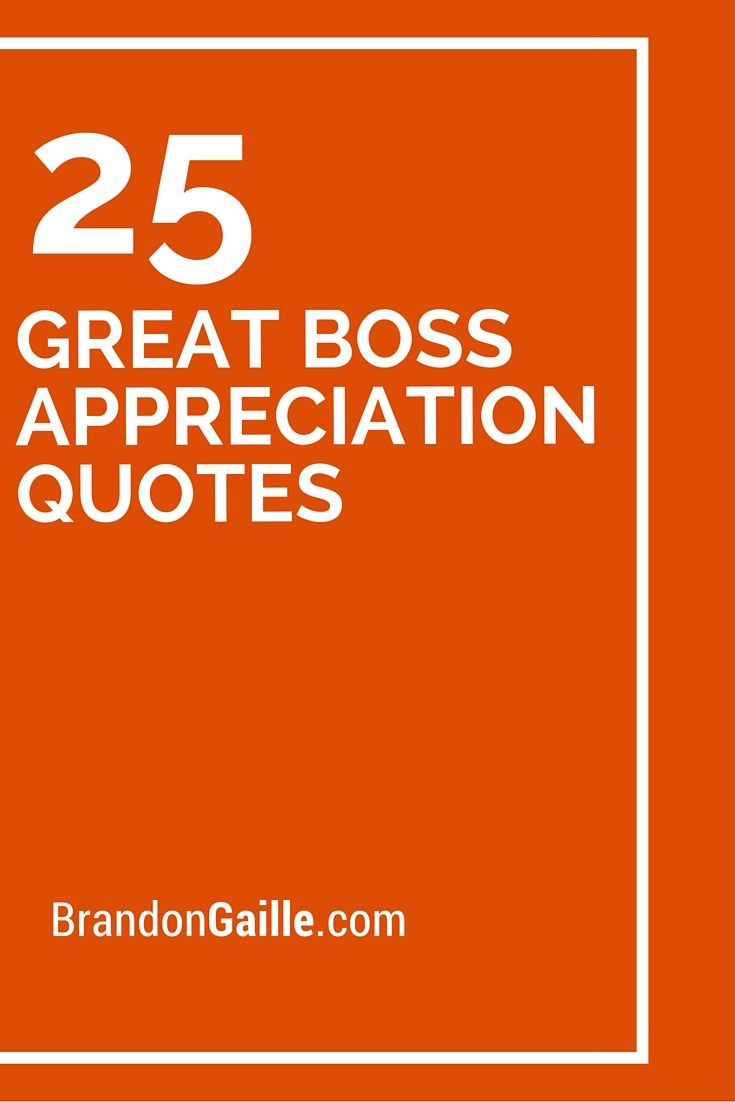 Appreciation Quotes For Boss 25 Great Boss Appreciation Quotes | Messages and Communication  Appreciation Quotes For Boss