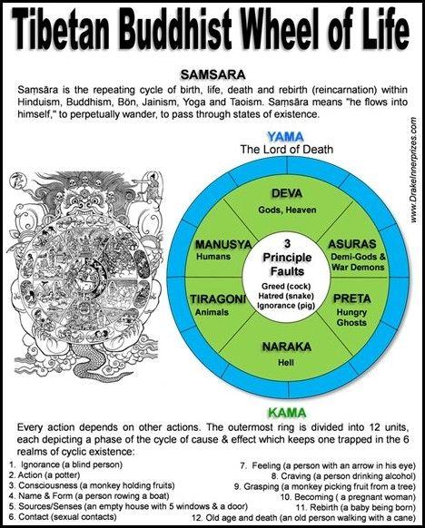 Best 25 buddhist wheel of life ideas on pinterest life for Buddhist wheel of life template