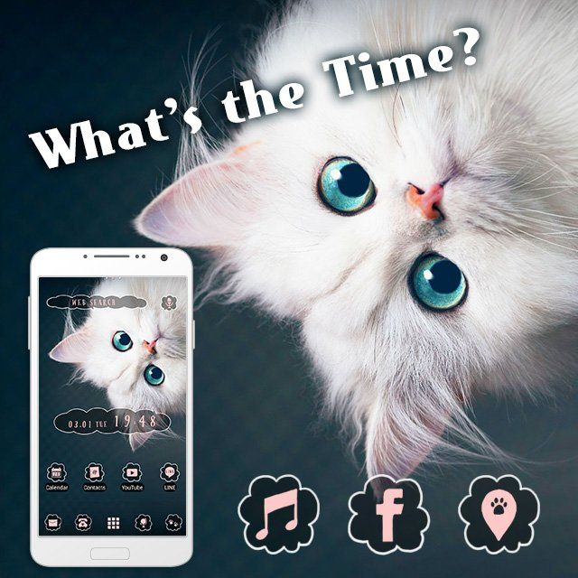 """""""What's the Time?"""" Available From:3/8 '16 (EST) It looks like this cat is telling the time! Its eyes and fluffy fur are too cute to resist! http://app.android.atm-plushome.com/app.php/app/themeDetail?material_id=1435&rf=pinterest #cat #wallpaper #kawaii #design #icon #plushome #homescreen #widget #deco"""